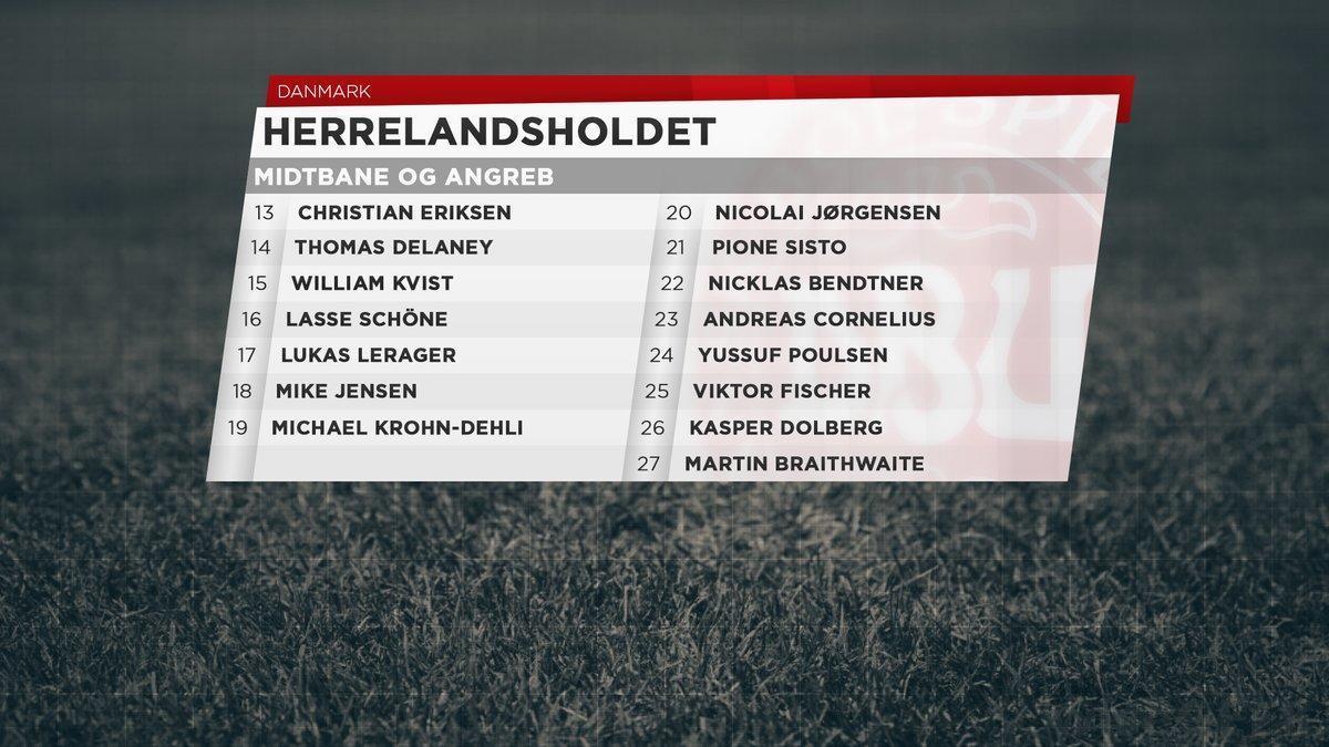 丹麦27人大名单曝光 看看都有谁