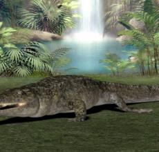 远古生物帝鳄究竟有多大,帝鳄吃什么呢?
