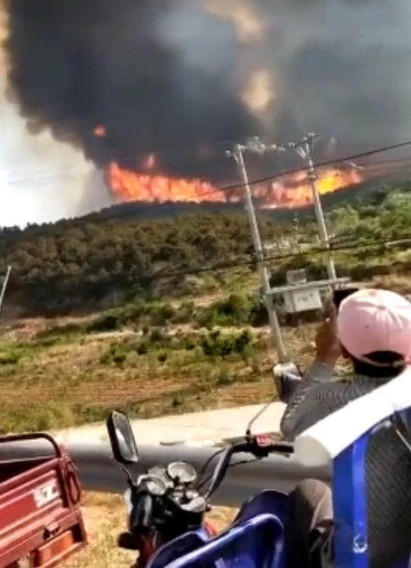 葫芦岛发生山火怎么回事 葫芦岛发生山火的原因