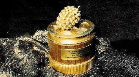 金酸梅奖提名 金酸梅奖是什么奖 被提名是哪些人 详情介绍