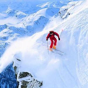 阿尔卑斯山区雪崩 有没有伤亡情况 遇险该如何保命